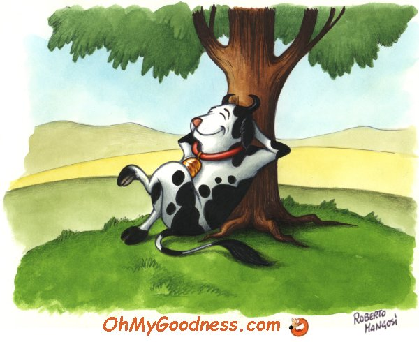 : I am feeling like a lazy cow today...