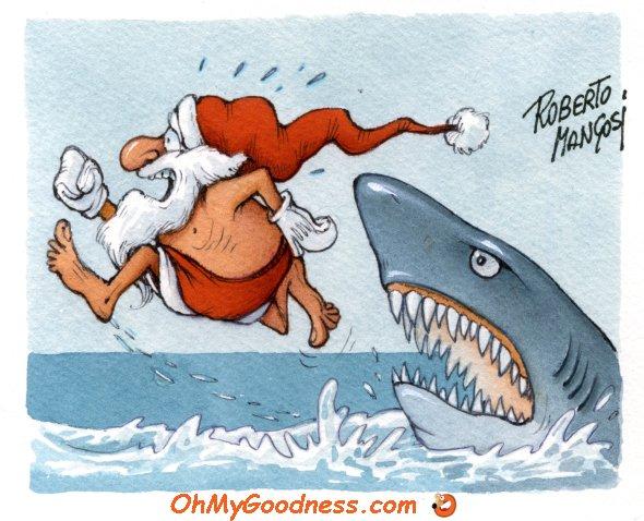 : White (Christmas!) Shark attacks Santa Claus
