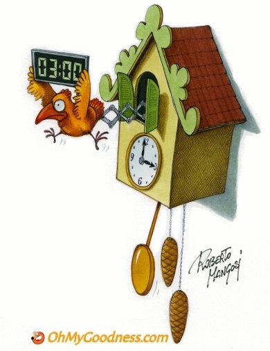 : Wake up at 2:00am and set clocks ahead 1 hour!